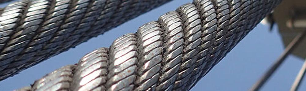 http://reatech-bg.com/clients/133/images/catalog/products/fb1e54fbe1dfed71_python3.jpg